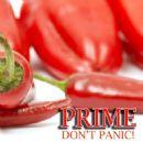 Prime Album - Don't Panic!