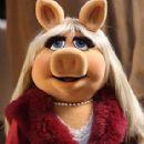 Miss Piggy - 285 x 385