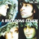 Chris Seefried - A Raccoons Lunch