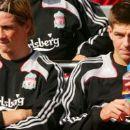 Fernando Torres - 380 x 190