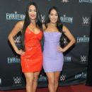 Nikki and Brie Bella – WWE Evolution in New York - 454 x 627