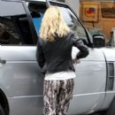 Sarah Harding: near Primrose Hill picking up some shopping from her cat