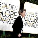Evan Rachel Wood at The 74th Golden Globes Awards - arrivals - 454 x 315