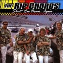 The Rip Chords - Shut 'Em Down...Again