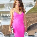 Elizabeth Hurley - The Elephant Parade Auction In Aid Of The Elephant Family Charity At Royal Hospital Chelsea On June 30, 2010 In London, England