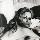 Ursula Andress - 454 x 602