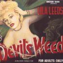 Wild Weed (1949) - 454 x 304