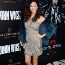 Sofia Milos- Premiere Of Summit Entertainment's 'John Wick: Chapter Two' - Arrivals - 454 x 651