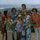 The Brady Bunch in Hawaii