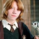 Harry Potter and the Goblet of Fire - Rupert Grint