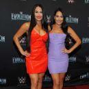 Nikki and Brie Bella – WWE Evolution in New York - 454 x 672