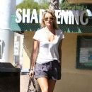Ali Larter: grabs groceries at Whole Foods in West Hollywood