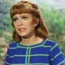 Petticoat Junction - Linda Henning - 255 x 323