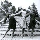 The Pleasure Seekers, 1964 - 454 x 363