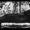 Musidora Marot - 301 x 150