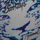 The Bar-Kays - Animal