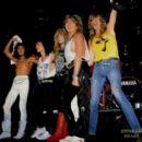 1987 Whitesnake Tour - 454 x 415