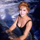 Gina Lollobrigida - 454 x 565