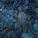 Portal Album - Vexovoid