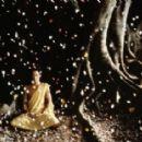 Little Buddha - 454 x 285