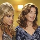 Desperate Housewives (2004) - 427 x 640