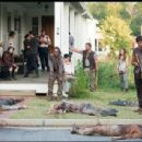 The Walking Dead (2010) - 454 x 308