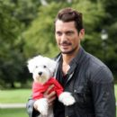 David Gandy at Pup Aid 2013