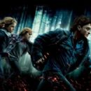 Harry Potter and the Deathly Hallows: Part 1 - 454 x 287