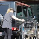 Rebel Wilson – Wearing a face mask VOTE in Los Feliz