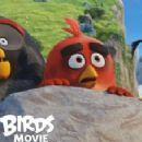 The Angry Birds Movie (2016) - 454 x 227