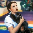 Judy Garland - The Wizard of Oz - 454 x 256