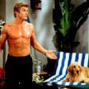 The Bold and the Beautiful - Winsor Harmon - 400 x 307