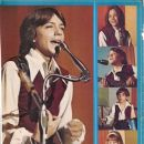 The Partridge Family - 390 x 500