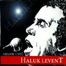 Haluk Levent Album - AKŞAM ÜSTÜ