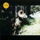 Woods Album - Ram