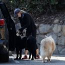 Renée Zellweger – Running errands with her dogs in Santa Monica