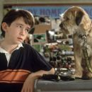 Liam Aiken stars as Owen Baker in Good Boy!