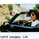 Coyote Shivers at Hollywood Hills