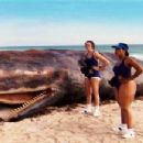 On patrol in their all-too-revealing beach garb, Deputies Trudy Wiegel (Kerri Kenney-Silver, left) and Raineesha Williams (Niecy Nash), happen upon a beached whale. Photo Credit: Twentieth Century Fox. TM and © 2007 Twentieth Century Fox, Paramount Pictur