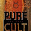 Pure Cult Anthology 1984 - 1995