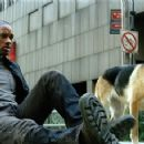 "Will Smith star as Neville in Warner Bros. Pictures' and Village Roadshow Pictures' sci-fi action adventure ""I Am Legend,"" distributed by Warner Bros. Pictures"
