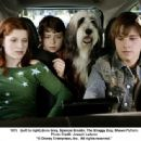 (Left to Right) Zena Grey, Spencer Breslin, The Shaggy Dog, Shawn Pyfrom. Photo Credit: Joseph Lederer © 2006 Disney Enterprises, Inc. All rights reserved.' - 454 x 336