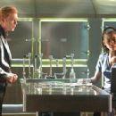 CSI: Miami (2002) - 454 x 309