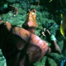 Weaver (Sylvester Stallone) shows off for Azteca (Jennifer Lopez) in Antz