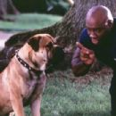 Michael Clarke Duncan as FBI Agent Murdoch, talking to his canine partner Agent Eleven in John Whitesell's 2001 comedy  See Spot Run, released by Warner Brothers