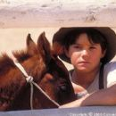 With the help of his young companion and caretaker, Richard (Chase Moore), Lucky (voiced by Lukas Haas) grows from an awkward colt into a magnificent stallion and triumphs against his harsh, unforgiving surroundings in Columbia's Running Free - 2000