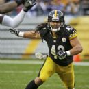 Troy Polamalu - 454 x 567