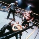 'The Snake' Jake Roberts, legend of professional wrestling, in Lions Gate's Beyond The Mat - 2000 - 400 x 287