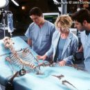 Only a skeleton is left, which ultimately vanishes before the eyes of colleagues (from left to right) Sarah Kennedy (Kim Dickens), Matthew Kensington (Josh Brolin), Linda McKay (Elisabeth Shue) and Carter Abbey (Greg Grunberg) in Columbia's Hollow Man