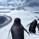 A scene from Warner Bros. Pictures', Happy Feet - 2006